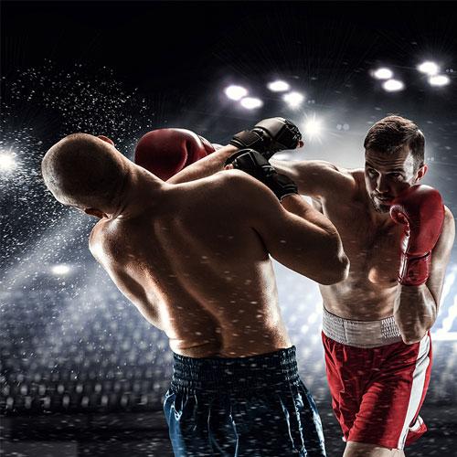 MMA във фитнес Флайс Младост