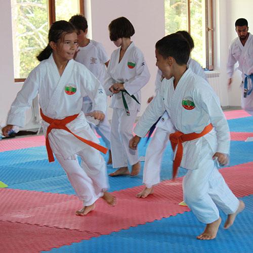Олимпийско карате за деца и възрастни във фитнес Флайс Княжево